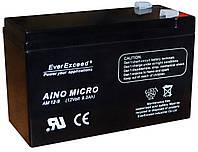 Аккумулятор EverExceed AM 12-9.5