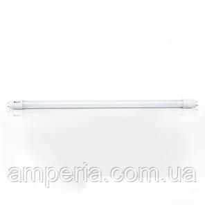Евросвет Светодиодная лампа трубчатая L-600-6400-13 T8 9Вт 6400K G13, фото 2