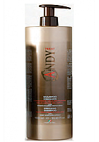 Andi Shampoo Stimolante 1000 ml - Шампунь стимулирующий рост волос, 1000 мл