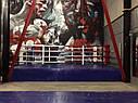 Боксерский ринг на помосте 7*7м, канаты 6*6м., фото 2