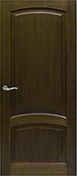 Красивая раздвижная дверь Ripon ДГ