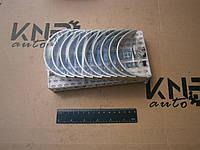 Вкладыши коренные к-т FAW-1061
