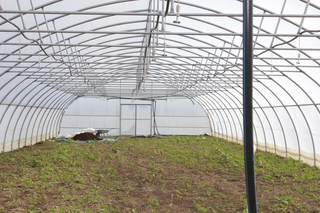теплицы фермерские коммерческие украина