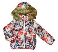 Куртка для девочек оптом, F&D, 6-16 рр., арт. YY-2903, фото 1