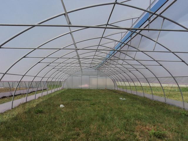окрытое крышное проветривание в теплице-ютре
