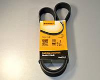 Ручейковый ремень на Renault Master II 09.2003>11.2004>2010, 2.2+2.5dCi (ALT,-AC) Contitech (Германия) 7PK1145