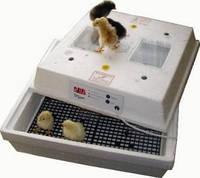 Бытовой инкубатор – разумное решение для автоматизации птицеводства