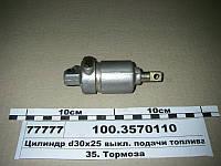 Цилиндр пневматический 30х25 (пр-во ПААЗ)