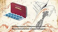 Восстановление стенок сосудов - Веномакс Аксиома