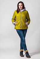 Куртка Дели (50-56), фото 1
