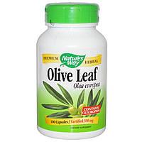 Экстракт листьев оливы, Olive Leaf, Nature's Way, 500 мг, 100 капсул