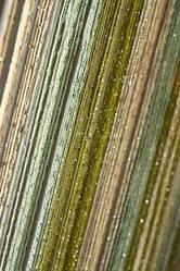 Люрексовая нить разных цветов