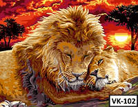 Картина на холсте по номерам VK 102  40x30см