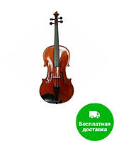 Скрипка Giuseppi GV-10 1/4 (комплект)