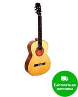 Классическая гитара HOHNER HC 20