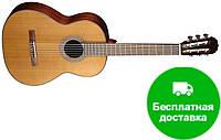 Классическая гитара Cort AC15 (NAT)