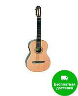 Классическая гитара со звукоснимателем HOHNER HC 06E