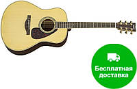 Электро-акустическая гитара Yamaha LL6 ARE