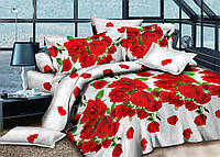 Двуспальный набор постельного белья Ранфорс №200