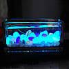Камень светящийся фосфорный для аквариума 10 шт голубой