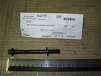 Болт головки цилиндров (длинный) , E010500901-01