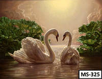 Картина на холсте по номерам MS 325 40x50см