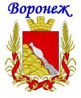 Такси Донецк - Воронеж