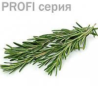 Эфирные масла Розмарин  Rosmarinus officinalis 5мл