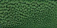 Краскa Pebeo Fantasy Prisme зеленая листва для фантастических эффектов, фото 1
