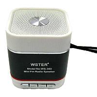 Портативная колонка WS-360(Распродажа!!!)(аккумулятор.USB;microSD)