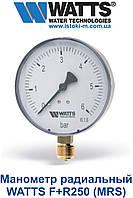 Манометр радиальный WATTS F+R250 (MRS) металлический корпус, фото 1