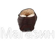 Мужские зимние кожаные мокасины угги UGG Australia УГГ коричневые, фото 3