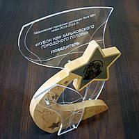 """Награда из дерева и акрила  """"Star-1"""""""