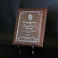 Диплом  наградной   (DG-1) (230*180мм)