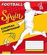 Тетради «ЕВРО - 2016», 24 листа, клетка, фото 2