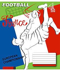 Тетради «ЕВРО - 2016», 24 листа, клетка, фото 3