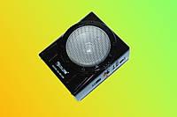 Радиоприемник с фонарем GOLON RX-129
