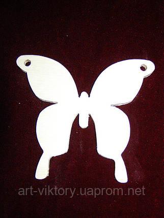 Бабочка, фото 2