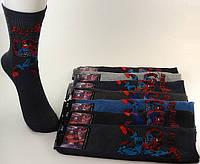 Детские махровые носки M-03-11 23-25 Z. В упаковке 20 пар