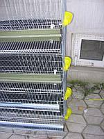 Клетка для содержания 350 перепелов, фото 1