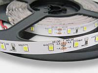 Светодиодная лента 2835 60 LED/мт Белая Економ