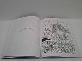 Країна мрій Арт-терапія Мандрівка птаха душі Розмальовка для натхнення та релаксації, фото 2