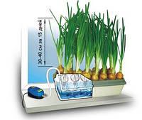 Установка для выращивания зеленого лука Луковое счастье