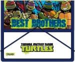 Папка для тетрадей 491055 Ninja Turtles 1 Вересня