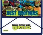 Папка для тетрадей 491055 Ninja Turtles 1 Вересня - erniboom market в Херсоне