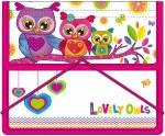 Папка для тетрадей 491073 Lovely Owls 1 Вересня