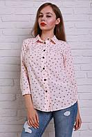Оригинальная молодежная блуза с рукавом 3/4 в пудровом цвете из новой коллекции