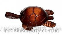 Шкатулка черепаха 5