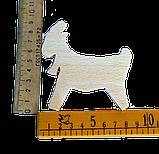 Коза, фото 3