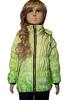 Демисезонная курточка , фото 1